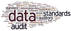 Audit-data-standards
