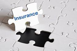 Insurance-puzzle-piece