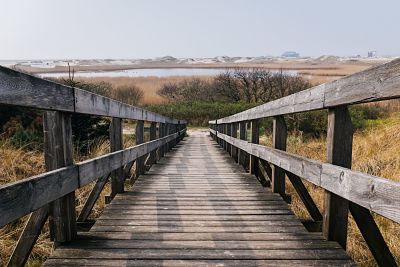 Wood-bridge