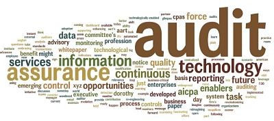 Audit-quality-word-cloud