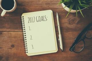 2017 goal setting